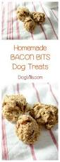 Pet Friendly Christmas Tree Preservative Recipe by Bacon Bits Recipe Homemade Bacon And Videos