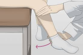 Active Posterior Drawer Orthopaedic Examination of the Knee