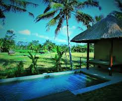 100 Uma Ubud Resort Temuku Villas Bali Villa