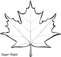 Remarkable Coloring Pages Leaf 2017 Maple Page With Leavesjpg