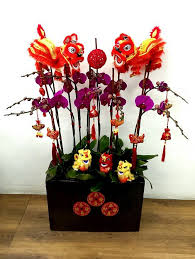 21 best Chinese New Year Flower Ideas images on Pinterest