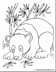 Impressive Panda Bear Coloring Pages With Page And For Preschool