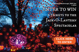 Roger Williams Pumpkin Spectacular 2017 by Jack O Lantern Contest Rhode Island Monthly