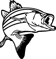 Bass Fish Outline 18247