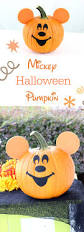 Pumpkin Patch Piedmont Nc by Best 25 Mickey Mouse Halloween Ideas On Pinterest Mickey Mouse