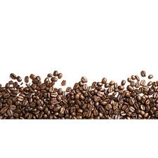 Coffee Beans Footer Transparent PNG