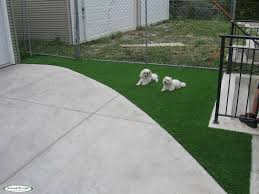 Artificial Turf Dog Runs | Pet Turf | Synthetic Turf Of Illinois Dogfriendly Back Yard Dogscaped Yards Pinterest Dog Superior Fence Cstruction And Repair Kennels Roseville Ca Domestically Dobson Run Fun Better Than A Ideas For Your Fourlegged Family Backyard Kennel Side Our House Projects Yards Artificial Turf Runs Pet Synthetic Of Illinois Youtube How To Build A Guide Install Image Detail Black Backyards Awesome 25 Best About Outdoor On