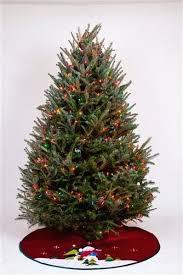 Pre Lit Christmas Trees On Sale At Walmart