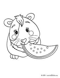 Eating Guinea Pig Coloring Page Color This Picture Of With The Colors Your Choice