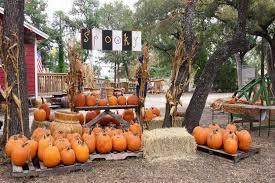 Swans Pumpkin Farm Hours by 8 Best Pumpkin Patches In Austin