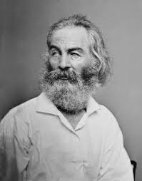 the wound dresser by walt whitman summary quotes study com