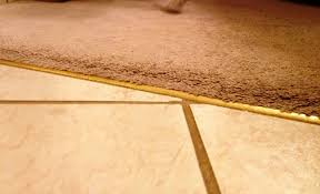 Wood To Tile Metal Transition Strips by 26 Ceramic Tile Carpet Transition Wide Carpet To Tile Transition