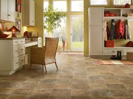 Grouted Vinyl Tile Pros Cons by Characteristics Of Vinyl Flooring Express Flooring