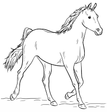 Click To See Printable Version Of Grey Arabian Horse Coloring Page