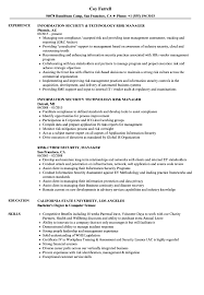 Download Risk Security Manager Resume Sample As Image File
