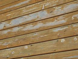 canadian deck stain test decks fencing contractor talk