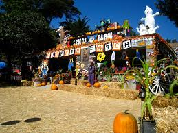 Morgan Hill California Pumpkin Patch by Pumpkin Patches In The Bay Area Interactive Map