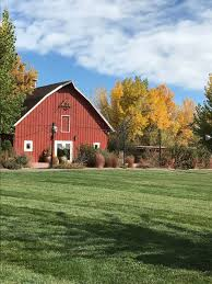 Pumpkin Patch Littleton Co by The Colorado Gal October 2016