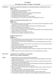 Download Banking Consultant Resume Sample As Image File
