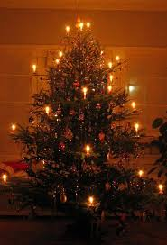 the tree was a branch of some evergreen fastened on a board its