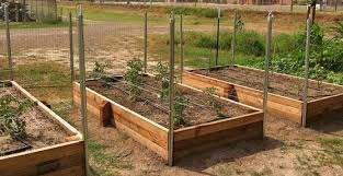 How to Build a Raised Garden Bed video
