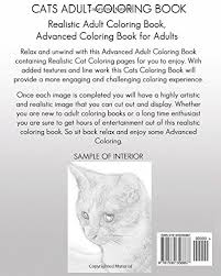 Amazon Cats Coloring Book Realistic Adult Advanced Cat For Adults Animals Volume 3