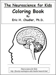 Anatomy Coloring Book Edition 5th The