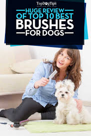 Conair Pro Dog Shedding Blade by Best Dog Brush Huge Review Of 10 Grooming Brushes For Dogs 2016
