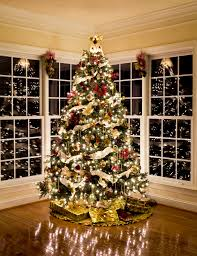 A Christmas Tree Is More Than Just With Lights And Ornaments It The Apex Of Homes Theme Perhaps Most Important Contributor