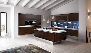 cuisine exemple cuisine exemple de cuisine avec clair couleur exemple de cuisine