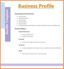 Resume Profile Template Sample Of Beautiful In Format