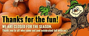 Pumpkin Patch Yuma Az Hours by Johansen Farms Home Facebook