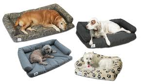 How to Ð¡hoose the Best Dog Bed