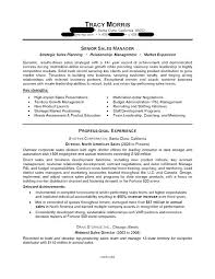 Objective For Manager Resume Objectives Managers Sales Samples