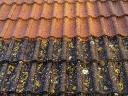 average typical cost to clean a roof in the uk