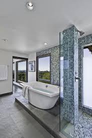 100 Mid Century Modern Bathrooms Enchanting Bathroom Light Fixtures Astounding
