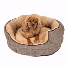 Unchewable Dog Bed by Hund Square Nuzzle Dog Bed Pets Dog Beds Bedding Bm Dog Beds And