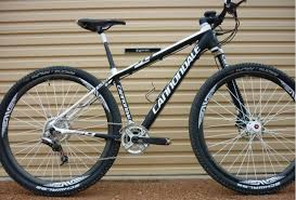 James Downing Mountain Bike Athlete Cannondale Flash Carbon