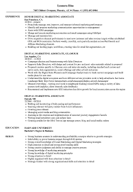 Best Outside Sales Representative Resume Example Livecareer ... Resume Examples By Real People Fniture Sales Associate Sample Job Descriptions 25 Skills Summer Example 1213 Retail Sales Associate Resume Samples Free Wear2014com Sale Loginnelkrivercom 17 New Image Fshaberorg Of Reports And Objective On For Retail Unique Guide Customer Representative 12 Samples 65 Inspirational Images Velvet Jobs