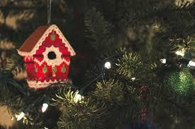 Type Of Christmas Tree That Smells by Christmas Tree Uliana Olson
