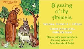 blessing of the animals st teresa of avila catholic church
