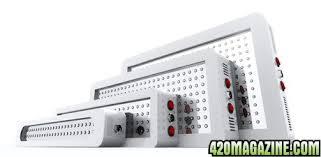 Platinum LED Salesperson