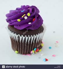 Chocolate cupcake that has sprinkles and purple frosting