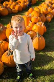 Kent Ohio Pumpkin Patches by 9 Best Fall In Wisconsin Corn Mazes Images On Pinterest Corn