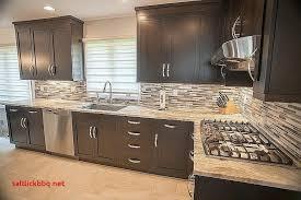 renovation meuble de cuisine peinture meuble cuisine castorama cuisine pour co cuisine