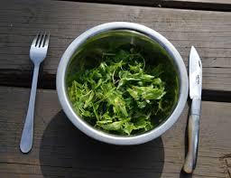 cuisine plantes sauvages plus robustes les plantes sauvages sont aussi plus riches et plus