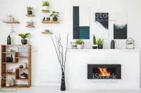echtes foto einem biokamin neben einem holzregal mit ornamenten und pflanzen in weißen wohnzimmer interieur mit gemälden und regale an der wand