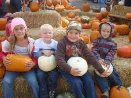 Pumpkin Patch Miami Lakes by Apple Hill Camino Ca 5 Wheels To 5 Star
