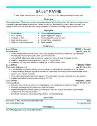 Best Loan Officer Resume Example