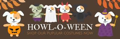 Halloween Express Paducah Kentucky by Welcome Best Pet Store U0026 Dog Daycare Designer Dog Clothes Dog